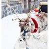 【一价全含】含机票东北雪乡旅游哈尔滨6天5晚纯玩跟团亚布力滑雪
